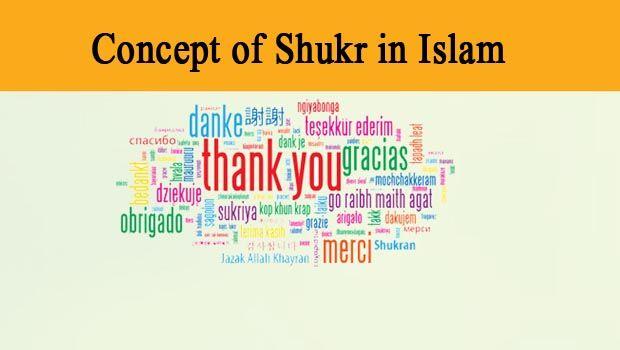 2013_6_shukr